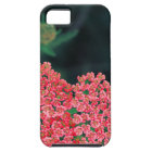 floral iPhone 5 covers