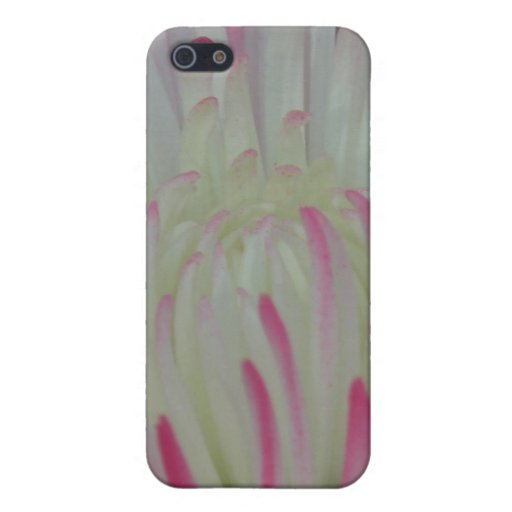 Floral iPhone 5 Fundas