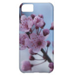Floral iPhone Five Blossom Case Cover For iPhone 5C
