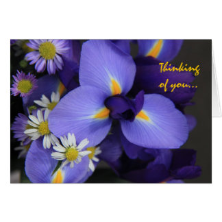 Floral, Iris and Mini Daisy, Thinking of You Greeting Card