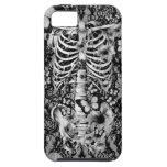 Floral lace skeleton with butterflies iPhone 5 covers