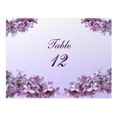 Floral Lilac Flowers Wedding Table Number Postcard at Zazzle