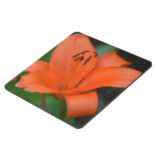 Floral Lilly Puzzle Coaster
