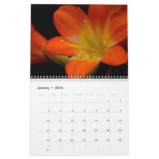 Floral Macros and Others Calendar