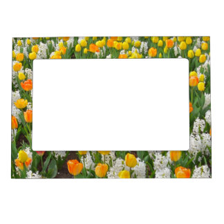 FLORAL MAGNETIC PIC.FRAME/ORANGE AND YELLOW TULIPS MAGNETIC FRAME