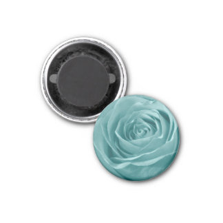 Floral Nature Abstract  Photo Vibrant Aqua Rose Magnet