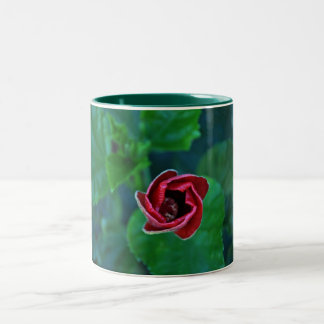 Floral New Red Hibiscus Two-Tone Coffee Mug