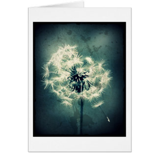Floral Note card, Dandelion in Green Card