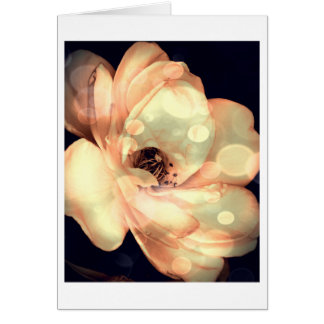 Floral Note Card, White Rose in Rich Sepia Card