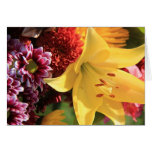Floral Note Cards, Yellow Amaryllis, Rust, Pink