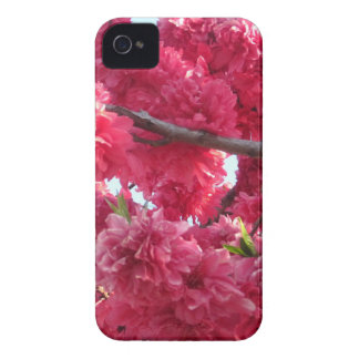 floral obsession carcasa para iPhone 4