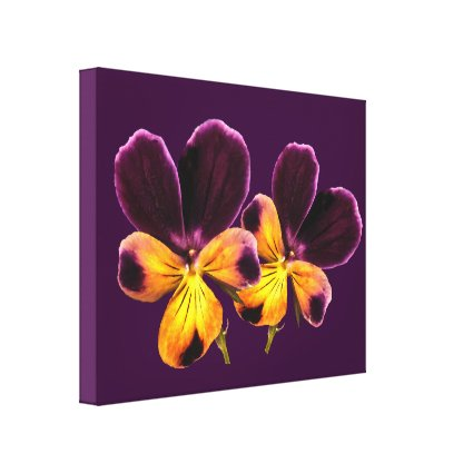 Floral Pansies Yellow Purple Flowers Canvas Print