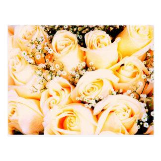 Floral Pastel Roses Postcard