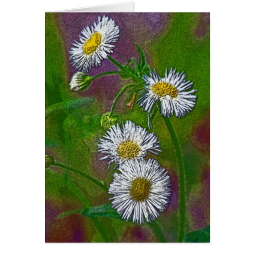 Floral photo notecard stationery note card