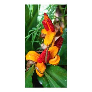 Floral Photocard Card