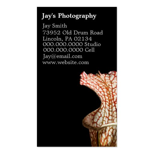 Floral Photography Business Cards