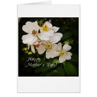 Floral Photography Mother's Day Gift Card