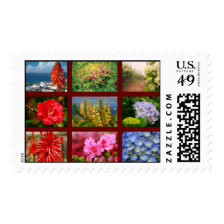 Floral photography postage