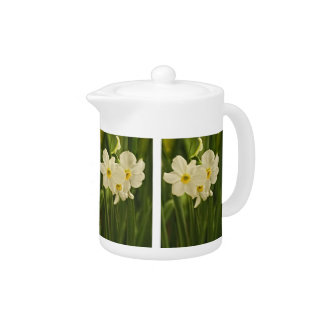 Floral Photography:  White Spring Narcissus Teapot