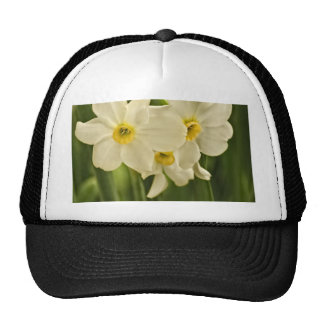 Floral Photography:  White Spring Narcissus Trucker Hat