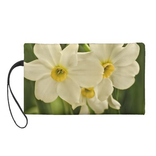 Floral Photography:  White Spring Narcissus Wristlet Purse
