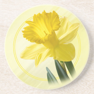 Floral Photography Yellow Daffodil Nature Pic Coaster