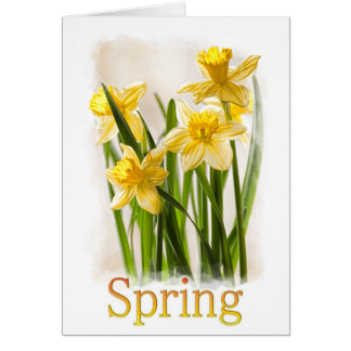 Floral Photography:  Yellow Spring Daffodils Card