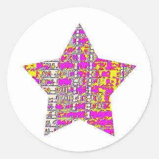 Floral Pink Star 2 Classic Round Sticker