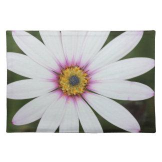 Floral Place Mat