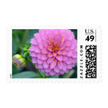 Floral Pleasure Postage