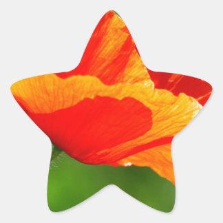 Floral - Poppy Sticker