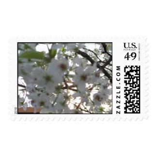 floral postage I