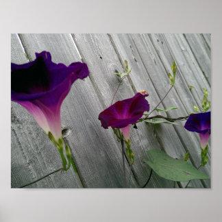 Floral Poster (Matte)