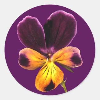 Floral Purple Yellow Johnny Jump Up Flower Sticker