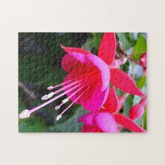 Floral Puzzle - 252 pieces