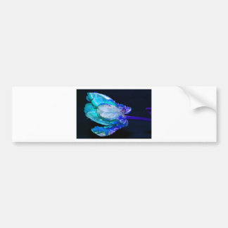 Floral quietly Life with Tulip Bumper Sticker