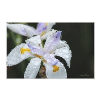 Floral Rain Drop Canvas