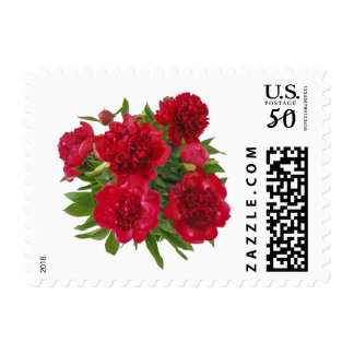 Floral Red Peony Postage