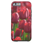 Floral Red Tulips  phone case Tough iPhone 6 Case