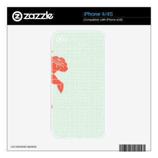 Floral retro iPhone 4 skin