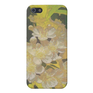 Floral Rhapsody In Gold and White iPhone 5 Covers