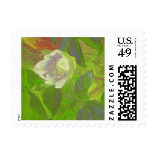 Floral Rhapsody in Green Stamps