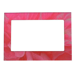 Floral Rhapsody in Magenta and Red Magnetic Photo Frames