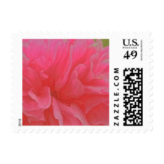 Floral Rhapsody In Magenta and Red Stamp