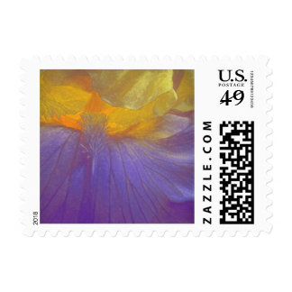 Floral Rhapsody In Purple And Yellow Stamp