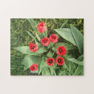 Floral rojo puzzle