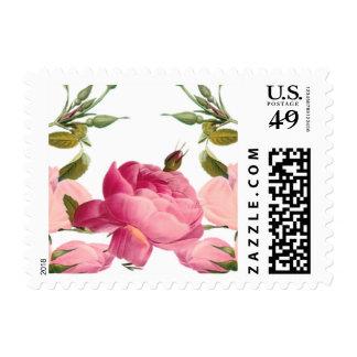 Floral romántico lindo sellos