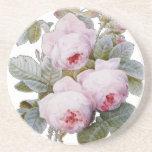 Floral rosado de Borbón de la rosaleda inglesa Posavasos Diseño