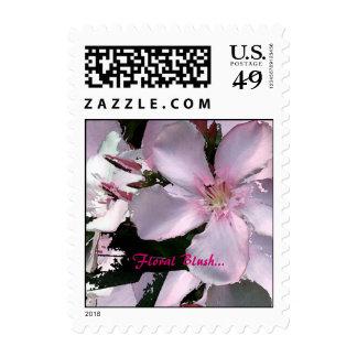 Floral ruborícese… envio