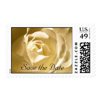 Floral Save the Date Cream Rose Photo Postage
